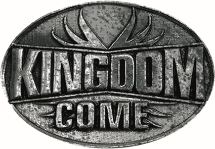 kingdome come