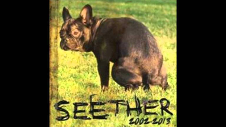 seether 2013