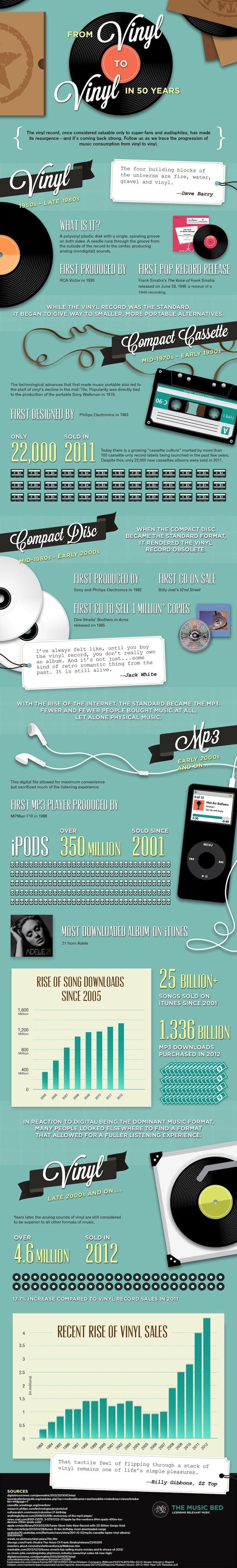 vinyl-infographic