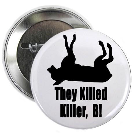 killerbekilled2