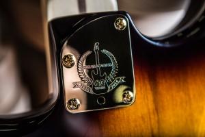 FenderStratocasterNeckPlate